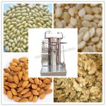 236557_professional-sesame-oil-press-machine