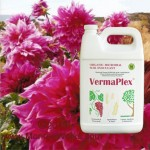 237369_gallon-vermaplex-liquid-fertilizer