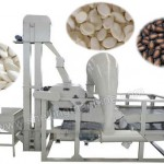 238847_melon-seeds-shelling-machine