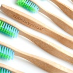 239980_woobamboo-adult-standard-toothbrush